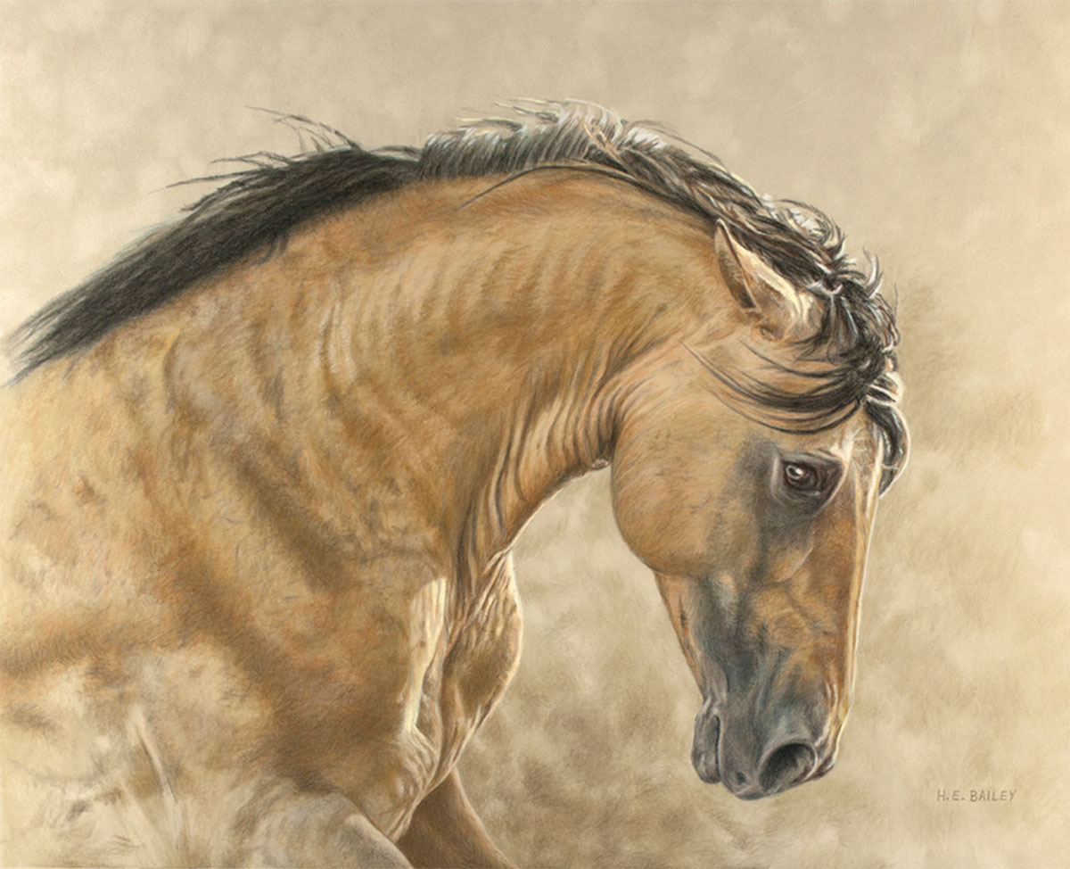 "Kiger Majesty, Colored Pencil, 16"" x 20"" • A Kiger mustang stallion prepares to challenge another stallion for his band of mares"