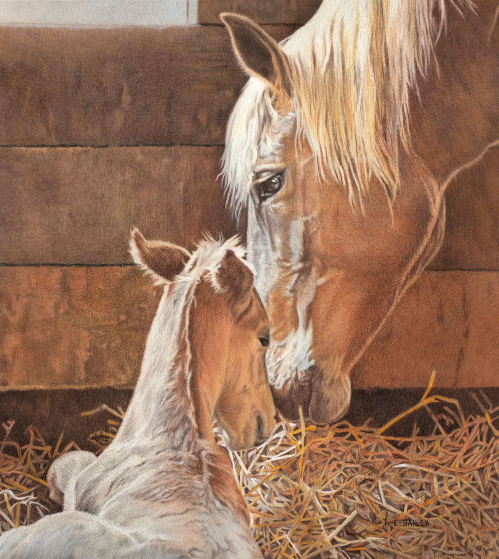 "The New Arrival is Here, Colored Pencil, 20"" x 18"" • A Palomino mare has just given birth to a new foal in her stall"