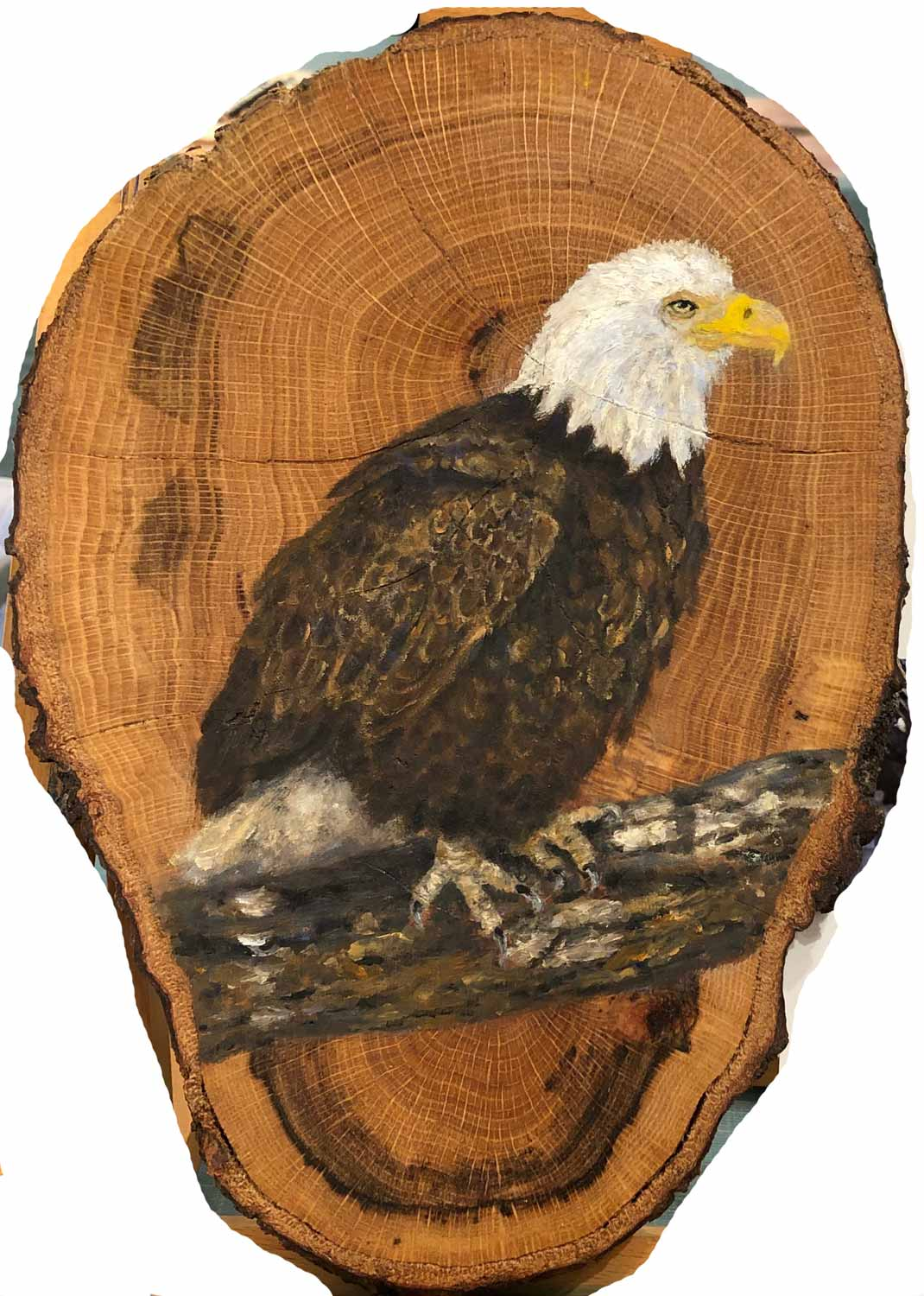 "Posing Eagle, oil on oak, 7.5"" x 11"""