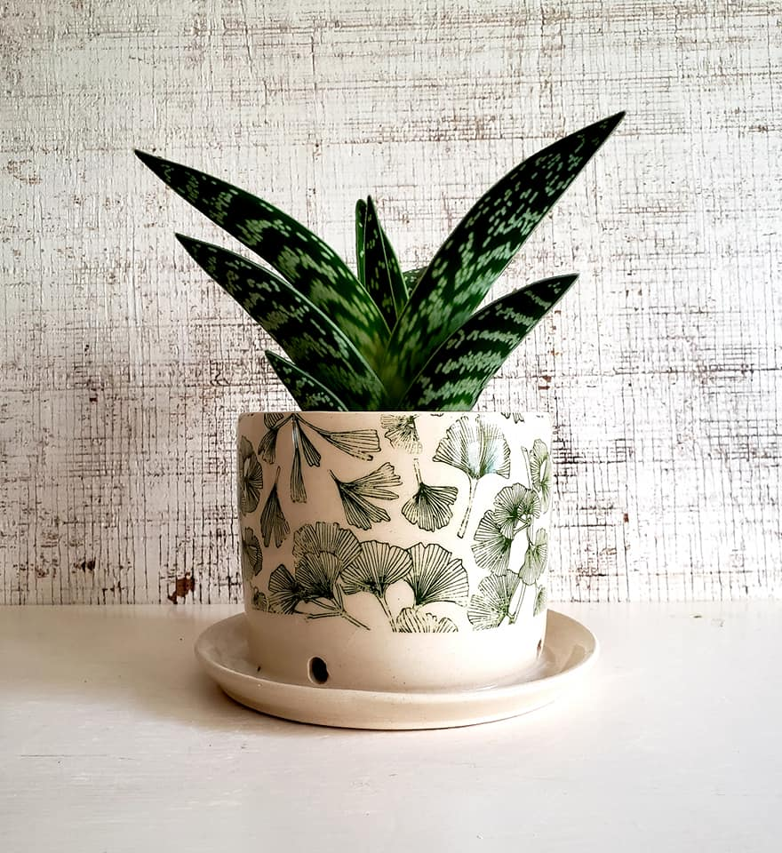 """Ginkgo Printed Planter"" Porcelain-hybrid clay with SilkScreen Underglaze Transfer, 4""x4"" Interior"